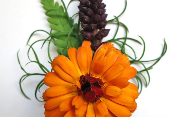 boyes-botanics-scottish-edinburgh-wedding-florist-buttonhole