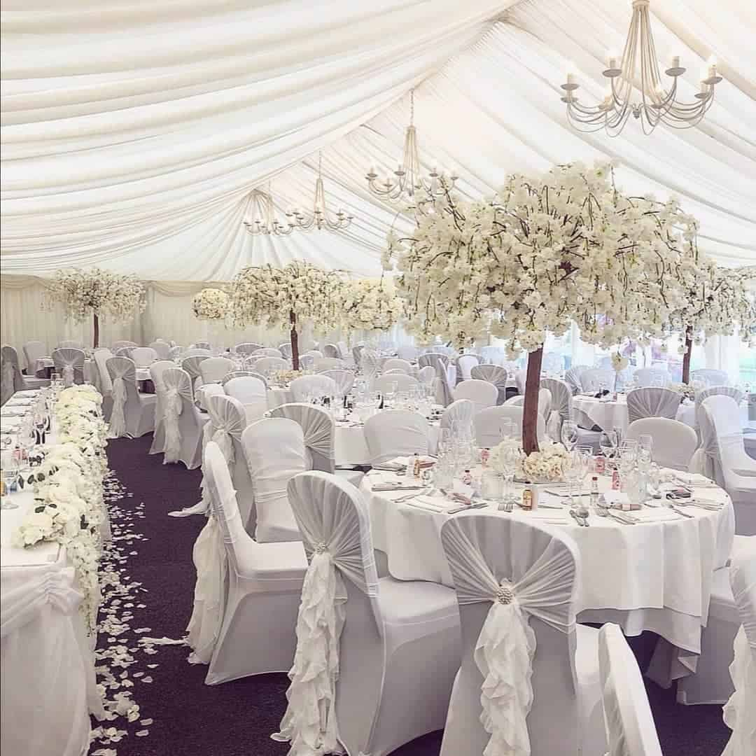 conifer-events-scottish-glasgow-wedding-planner-decor-supplier-venue-directory-marquee-cherry-blossom-trees